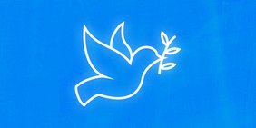 Friedenstaube: Auch zum Antikriegstag ein wichtiges Symbol